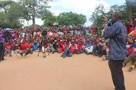 chamisa picture